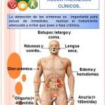 10 hábitos comunes que perjudican seriamente tus riñones