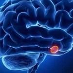 ¿Qué es y para qué sirve la melatonina?