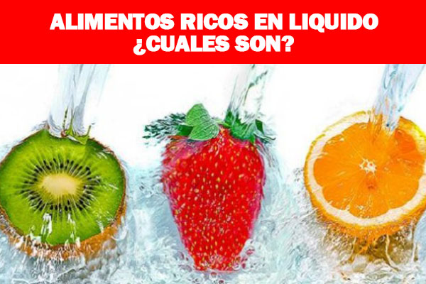 alimentos ricos en liquido, alimentos con agua, alimentos con liquidos