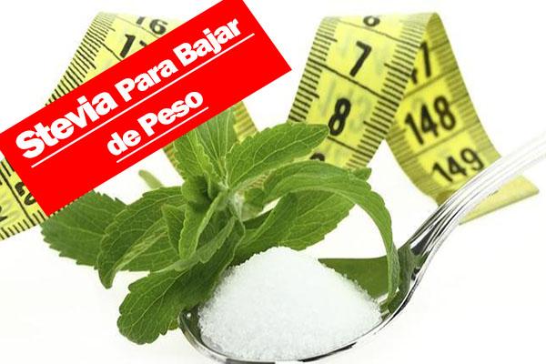 Stevia para bajar de peso