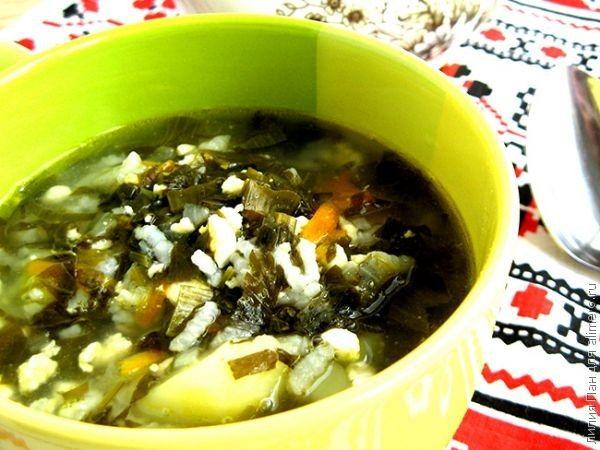 Зеленый борщ с рисом рецепты с фото