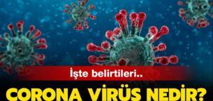 Koronavirüsü Covid-19 Nedir? Koronavirüs Korunma Yöntemleri