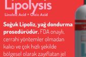 Lipolysis Soğuk Jel Nedir Ne İşe Yarar – Kullanıcı Yorumları