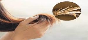 Untuk Mengurangi Rambut Bercabang