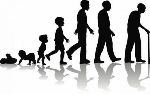 Omul o poveste – Ciclurile de 7 ani