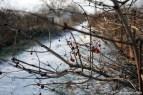 winter_ATO_5