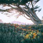 pexels photo 4947544