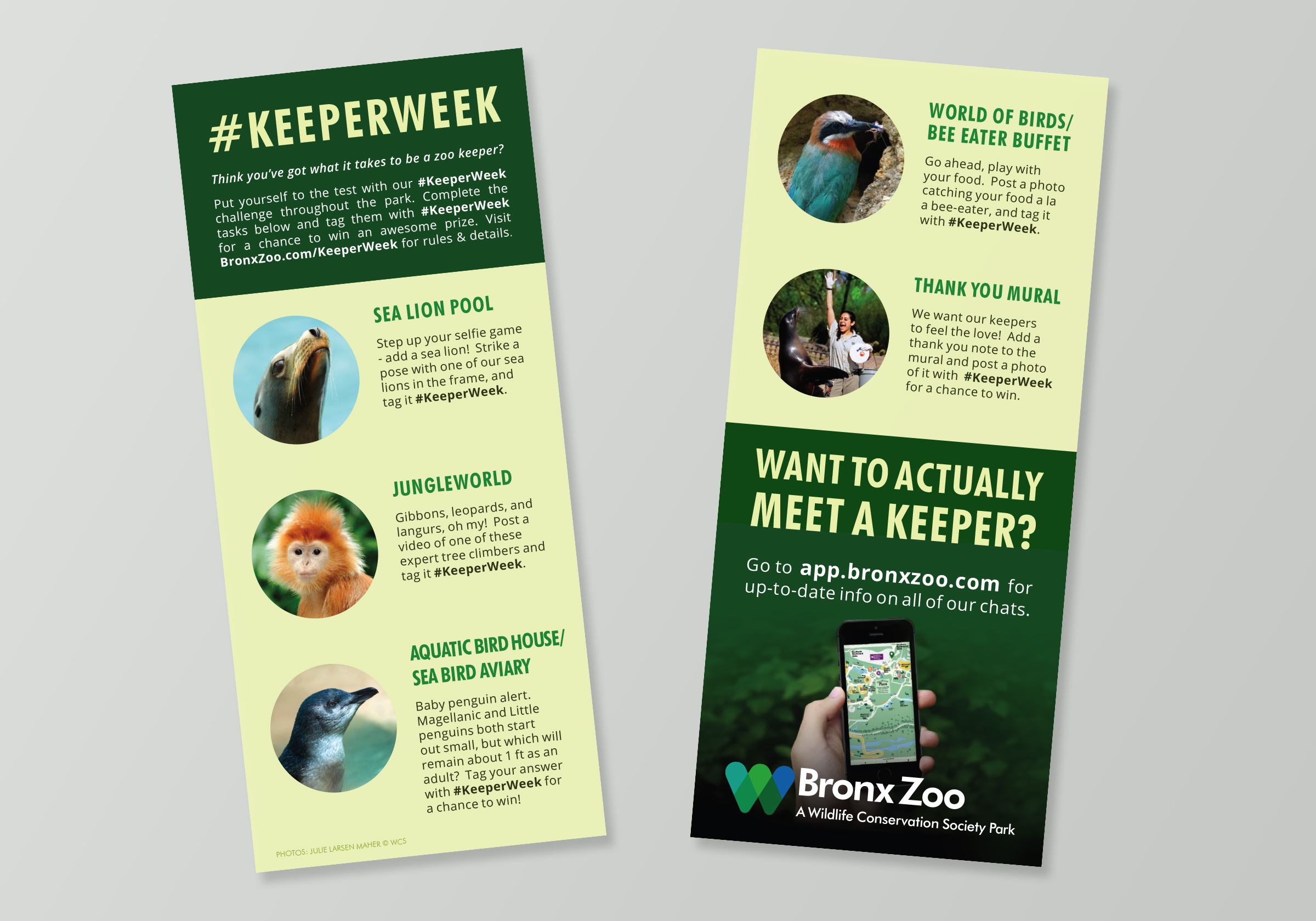 Bronx Zoo Keeper Week