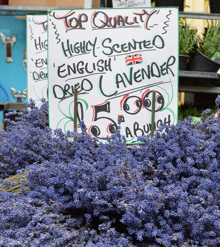 english-dried-lavender