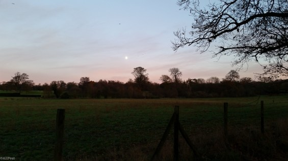 hertfordshire-dusk-countryside