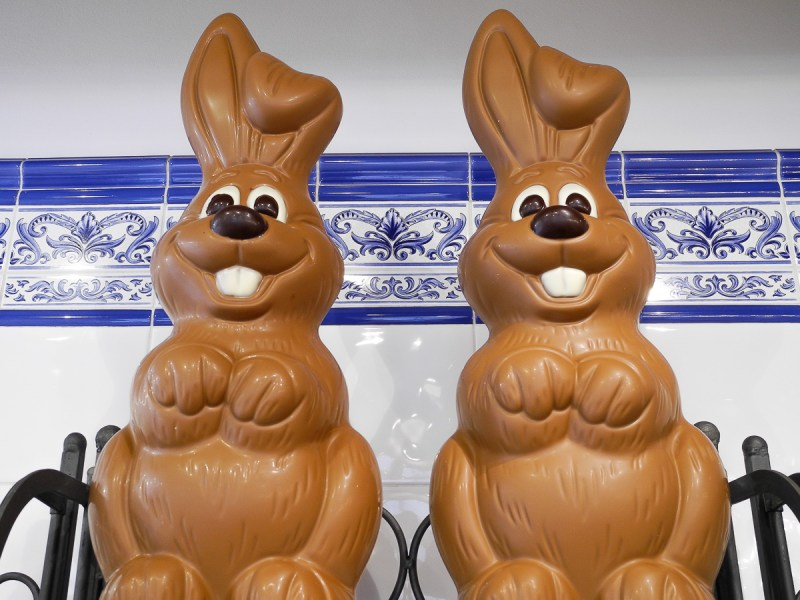 bruges-easter-chocolate-bunnies
