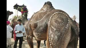 राजस्थान की प्रमुख लोक कलाएँ तथा हस्त कलाएँ