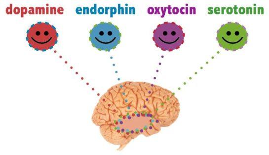 Mutluluk Verici Hormonlar » Alışkanlık