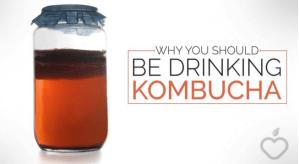 Why You Should Be Drinking Kombucha from www.positivehealthwellness.com