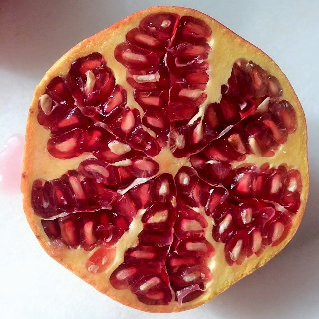 Cross section of a pomegranate