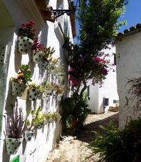 Whitewashed house with plantpots on wall in Castellar de la Frontera