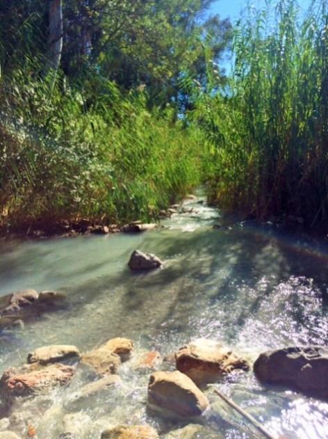 Stream at Los Banos de la Hedionda Roman Baths