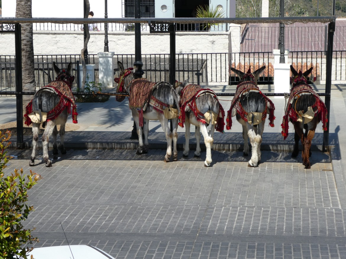 Donkey parking area 2