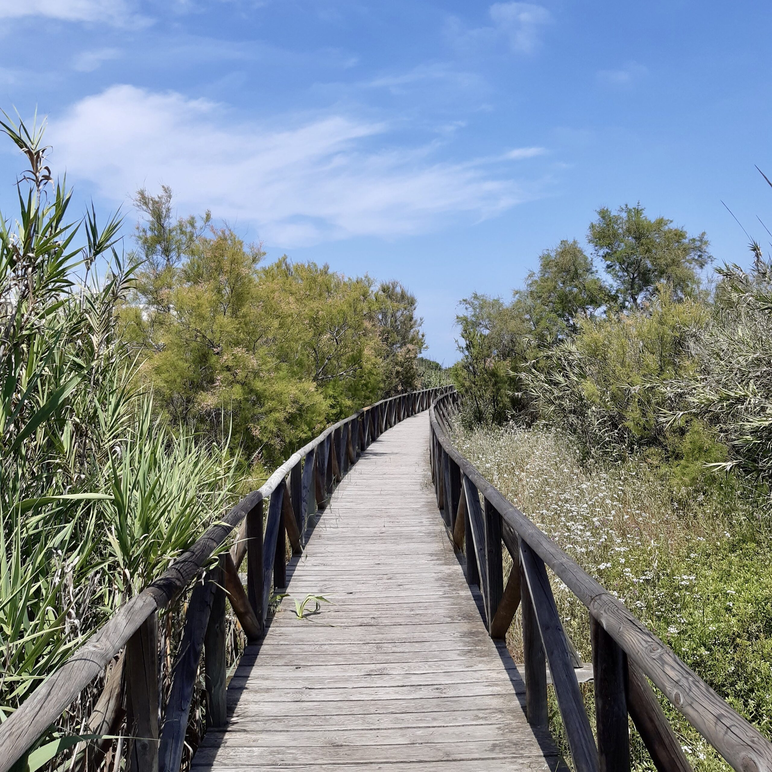 Boardwalk to Torreguadiaro