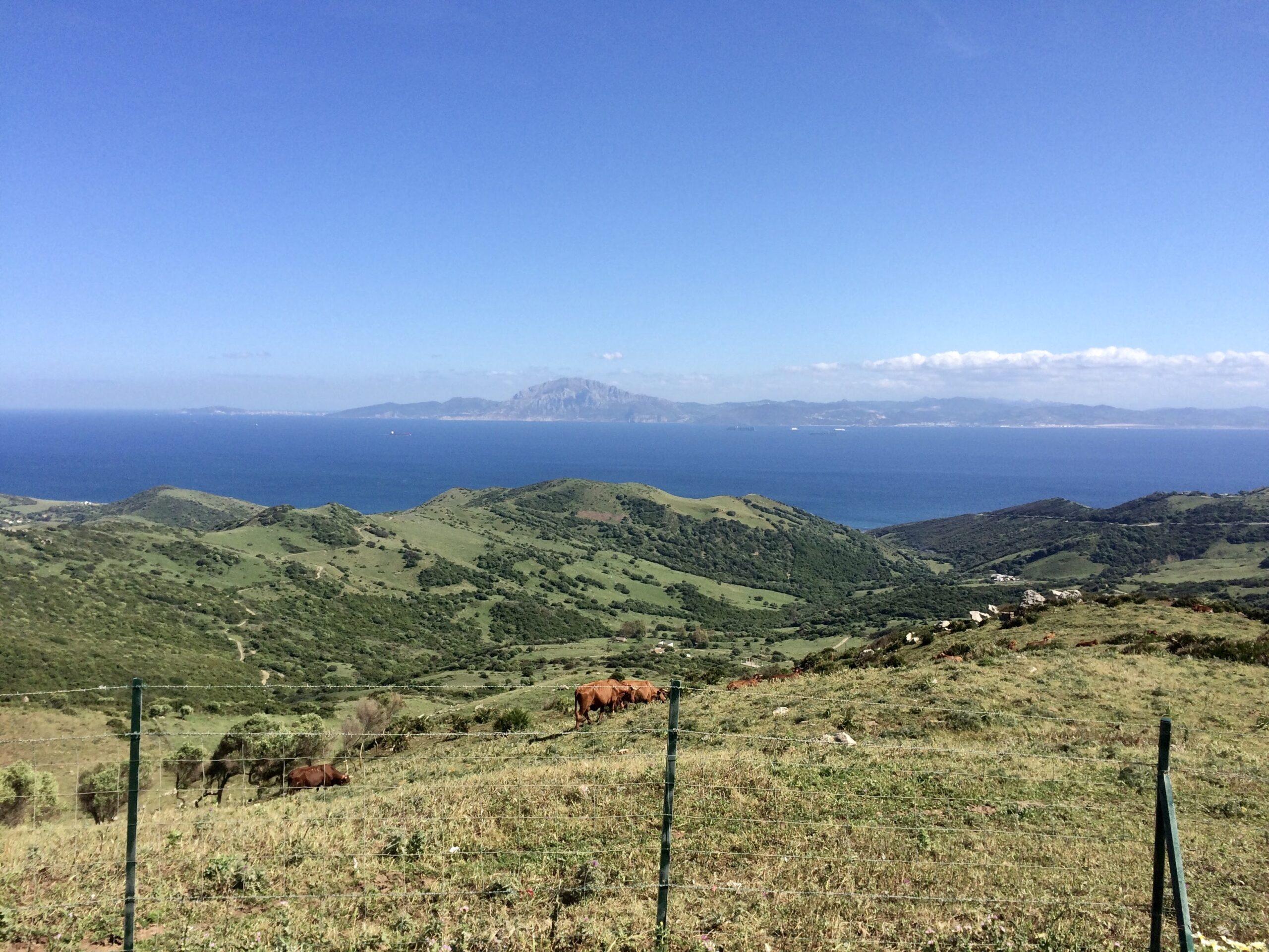 View from Mirador del Estrecho