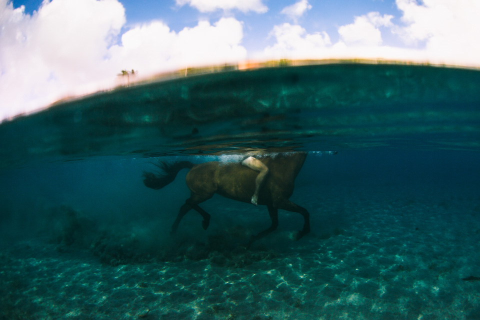 Riding horses in the ocean in Dominica with Rainforest Riding