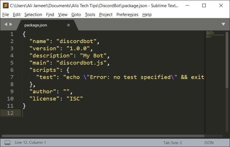 Node.js Package.json Discord Bot
