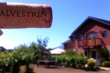 Salvestrin winery header