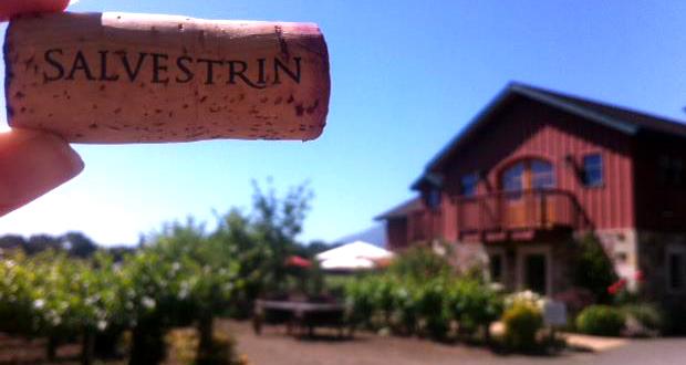 Salvestrin winery header