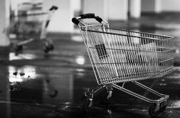 shopping cart2