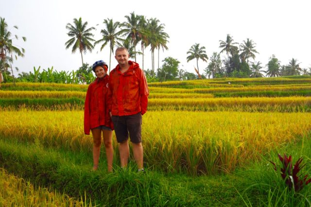 Cycling through the rice fields in the pouring rain