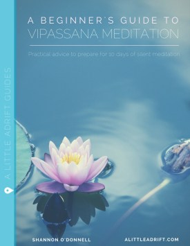 review of vipassana course