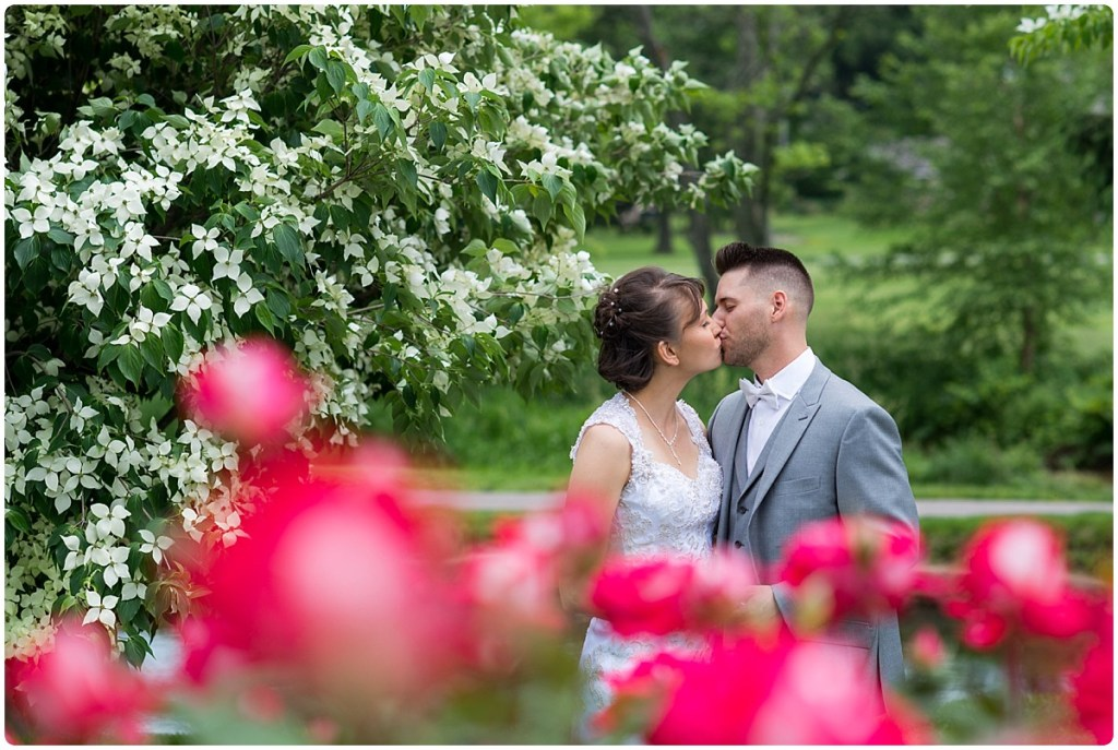 First Look Allentown Rose Garden