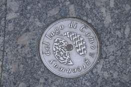 Greenway disc
