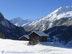 Raccard with Pigne d'Arolla behind