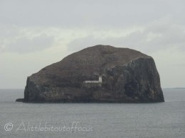 The Bass Rock and Lighthouse