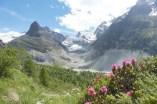 30 Mont Miné and glacier