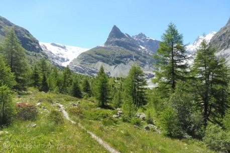 9 Ferpècle glacier and Mont Miné