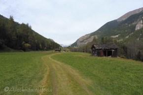 12-grass-track-home