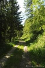 5 Riverside track