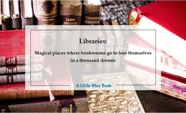 Libraries - Magical places where bookworms go to lose themselves in a thousand dreams. A Little Blue Book