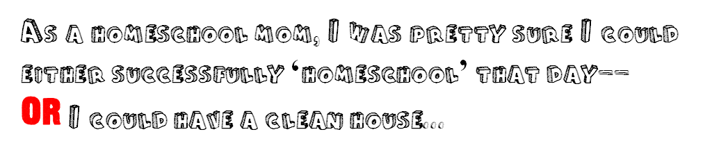 as a homeschool mom
