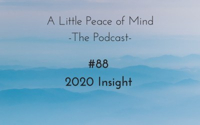 Episode 88: 2020 Insight