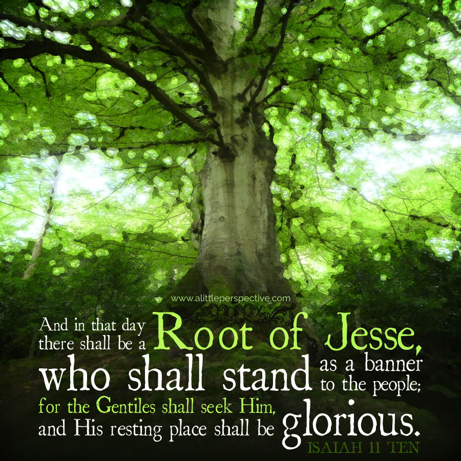 Image result for Isaiah 11:10