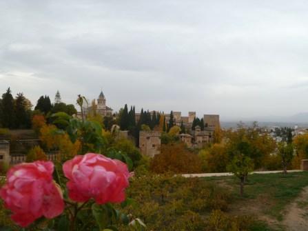 Granada (400)