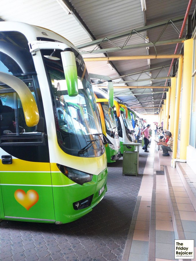 Many buses waiting