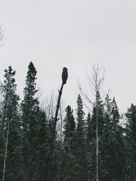Processed with VSCO with a7 preset