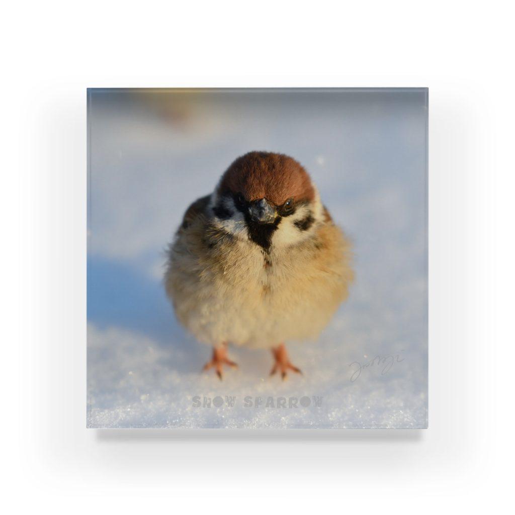 雪の福良雀アクリルブロック