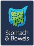 stomach & bowels