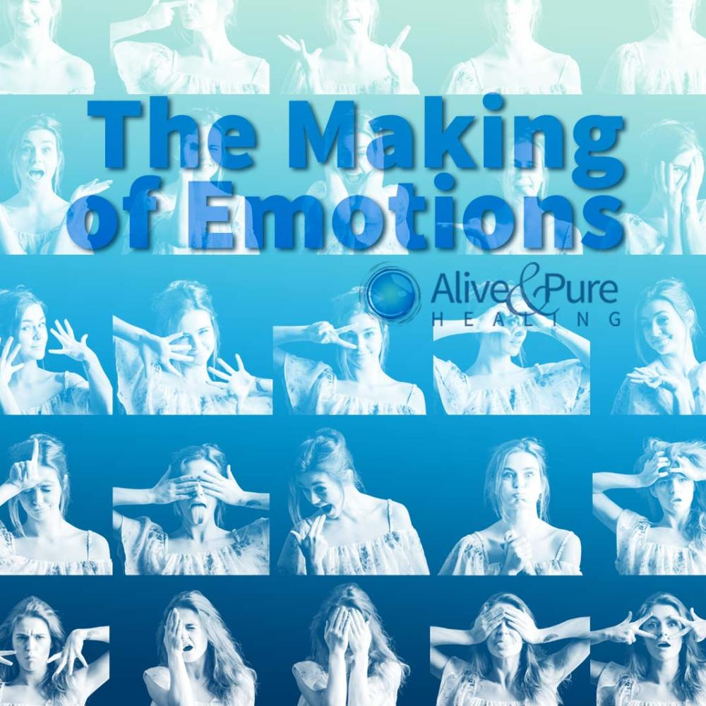 The Making of Emotions