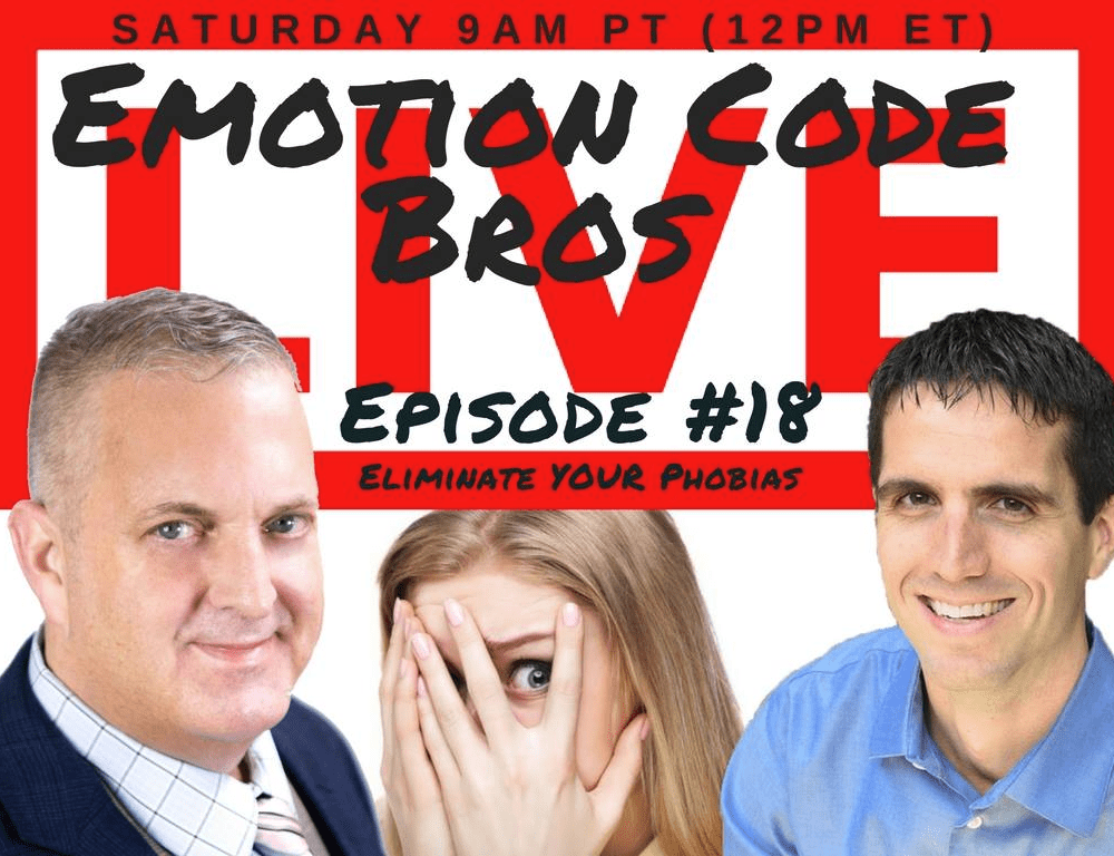 Episode #18 Phobias? Bugs, Spiders, Rats, Snakes? The Emotion Code Bros can HELP!